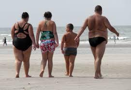 obesité france